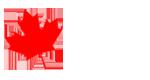 Kanada ILAC Dil Okulu